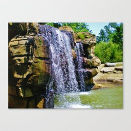 Changing color Canvas Print