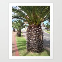 Pineapple Tree Art Print