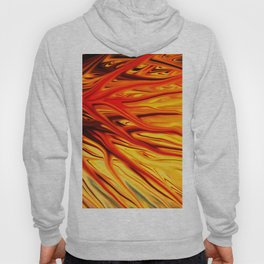 Orange Firethorn by Chris Sparks Hoody