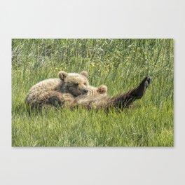 My Foot's So Pretty, Oh So Pretty - Bear Cubs, No. 2 Canvas Print