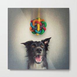 pup playing Metal Print