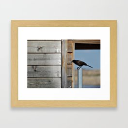 Just Stopped By Framed Art Print