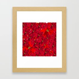 POINSETTIA POINSETTIAS RED RED Framed Art Print
