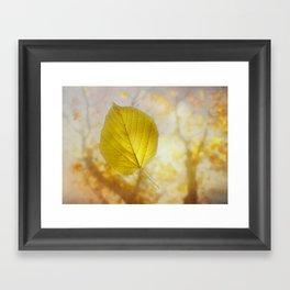 Epiphany Framed Art Print