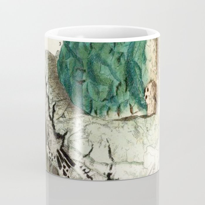 Vintage Mineralogy Illustration Coffee Mug