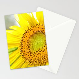 Absorbing the Sun Stationery Cards