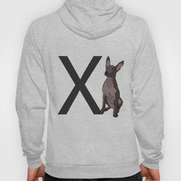 X is for Xoloitzcuintli (hairless dog) Hoody