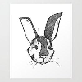 V - Animal Alphabet Art Print