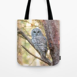 owl in the forest Tote Bag