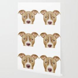 Pit Bull light Brown 2,Dog illustration original painting print Wallpaper