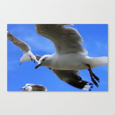 Gulliver again Canvas Print