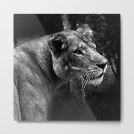 A King only bows down to a Queen Metal Print