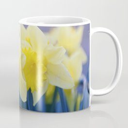 Yellow Narcissus #3 Coffee Mug