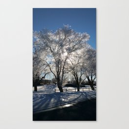 Sunshine in winter Canvas Print