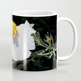 Matilija Poppy Coffee Mug