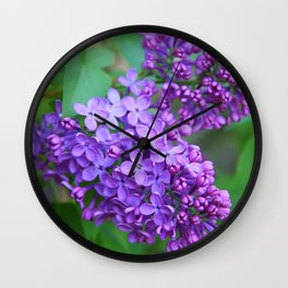 Lilacs Almost in Full Bloom Wall Clock