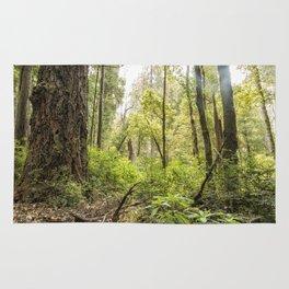 Schrader Old Growth Forest Rug