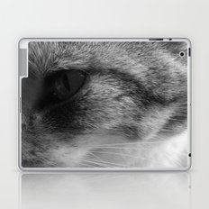 Kitty Kat Laptop & iPad Skin
