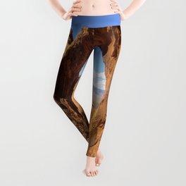 Moab Leggings