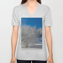 ice sculptures Unisex V-Neck