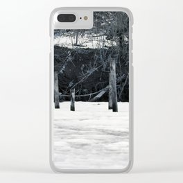 Pond Posts Clear iPhone Case