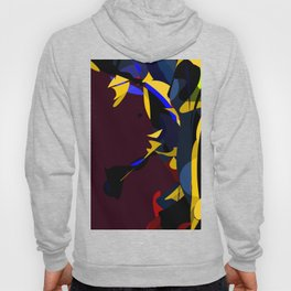 Missed Guided Illusions Hoody