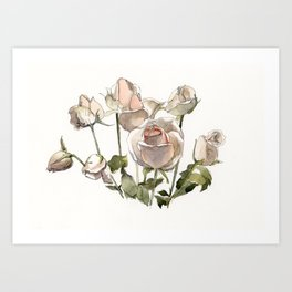 Roses in ink and wash Art Print