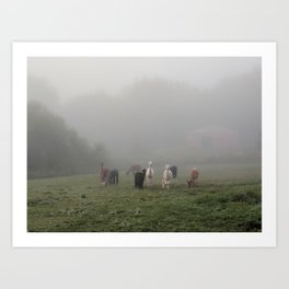 Grazing Girls Art Print