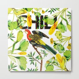 Chill Parrot Metal Print