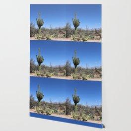 A Desert Landscape Wallpaper