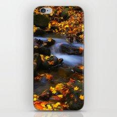 Autumn Flow iPhone & iPod Skin