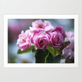Springtime Pink II Art Print