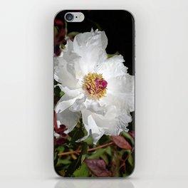 De Light Full iPhone Skin