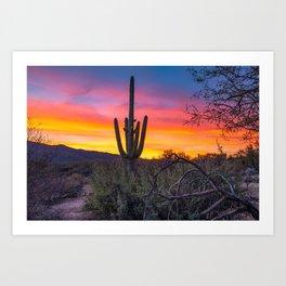 Land of Giants - Saguaro Cactus at Sunrise in the Sonoran Desert Art Print