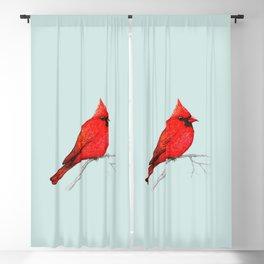 Northern cardinal pen drawing Blackout Curtain