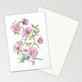 Pink Climbing Rose Stationery Cards