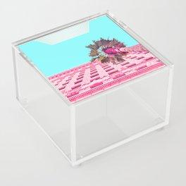LA Palm Tree Look Up Acrylic Box