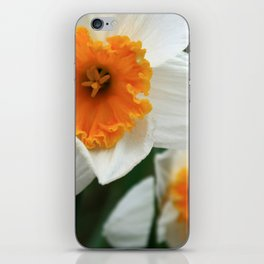 Spring Lovelies iPhone Skin