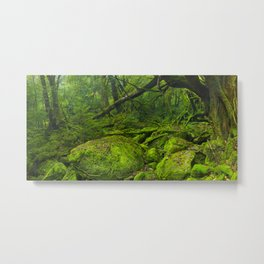 Lush rainforest along Shiratani Unsuikyo trail on Yakushima Island, Japan Metal Print