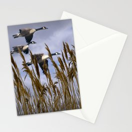 Geese flying in for a landing Stationery Cards