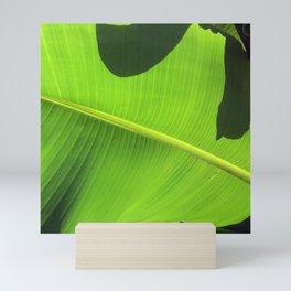 Banana Leaf, Dark Shadows Mini Art Print