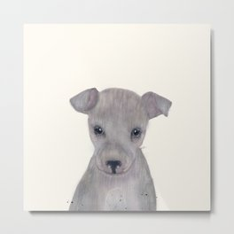 little greyhound Metal Print