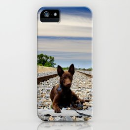 Australian Kelpie on the tracks iPhone Case