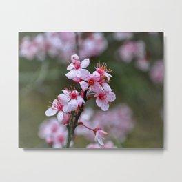 Floral Print 033 Metal Print