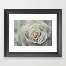 White Rose 9419 Framed Art Print