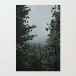 Backwoods Winter: Ponderosa Pines, Washington Canvas Print