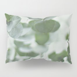 EUCALYPTUS GREEN 2 Pillow Sham