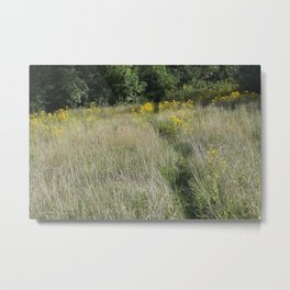 Field of Gold No.2 Metal Print