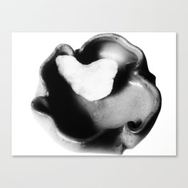 Taste of Love Canvas Print