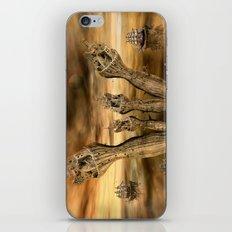 Andere Welten iPhone & iPod Skin